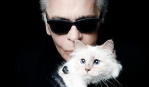 Кошка Лагерфельда